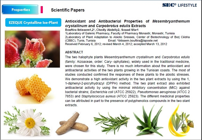 Scientific Papers - EZEQUE Ice Plant